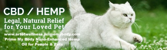 hemp-oil-for-pets copy